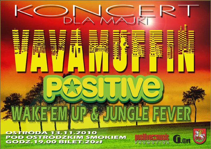 2010.11.13 VAVAMUFFIN / POSITIVE / WAKE UP & JUNGLE FEVER